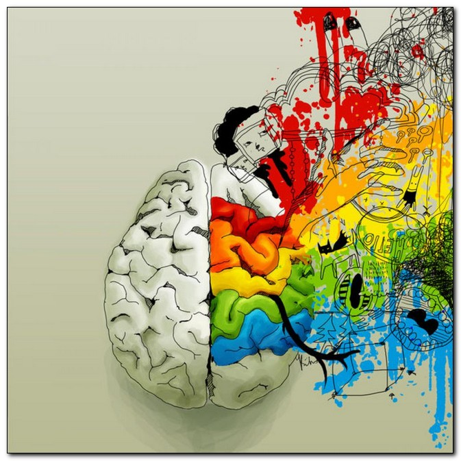 brain dominance The lateralization of brain function is the tendency for some neural functions or cognitive processes to be specialized to one side of the brain or the other the medial longitudinal fissure separates the human brain into two distinct cerebral hemispheres , connected by the corpus callosum.