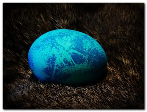 Фотографии красивых пасхальных яиц к празднику Пасхи