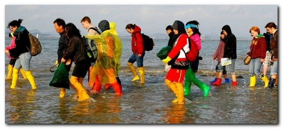 «Моисеево чудо»  острова Чиньдо ...