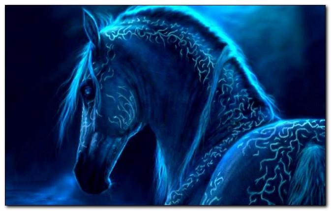 Что принесет 2014 год для всех знаков Зодиака