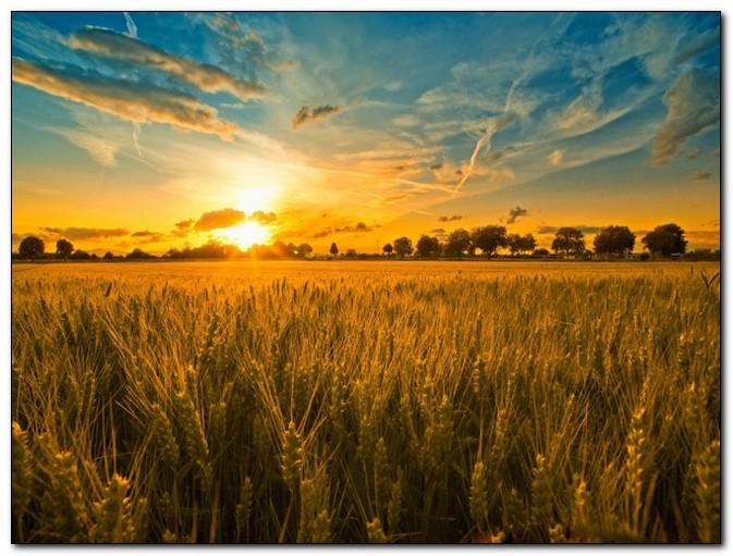 10 фактов о летнем солнцестоянии