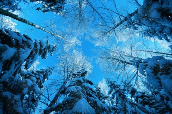 Небо как снежинка