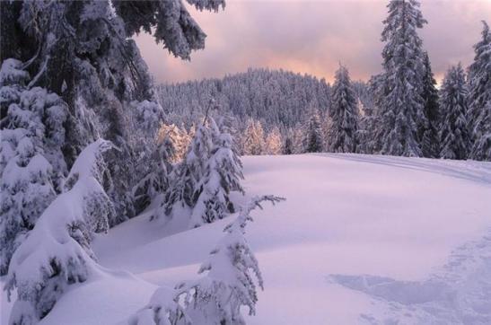 Зимний простор