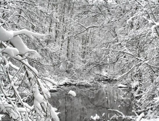 Зимний сюр